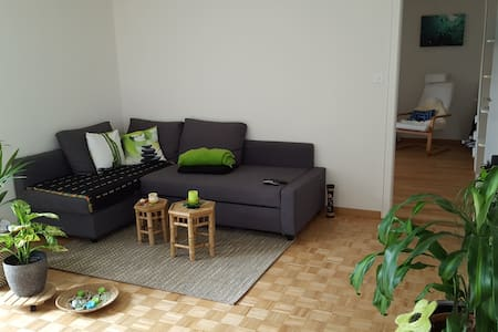 Quiet 2.5 room apartment - Lucerne