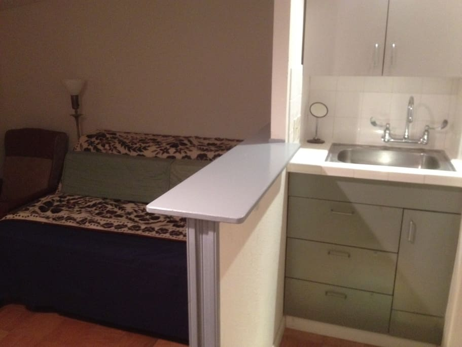 Sink Area next to room with twin beds set up as a couch