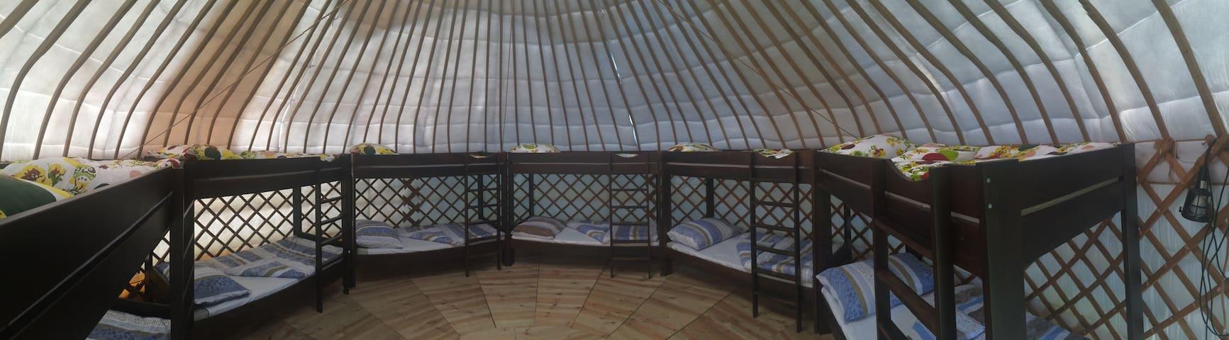 Bakonyi jurták a Bagolyvár kertjében Zircen - Zirc - Yurt