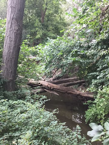 The year-round creek that will kill you to sleep if you keep a window open!