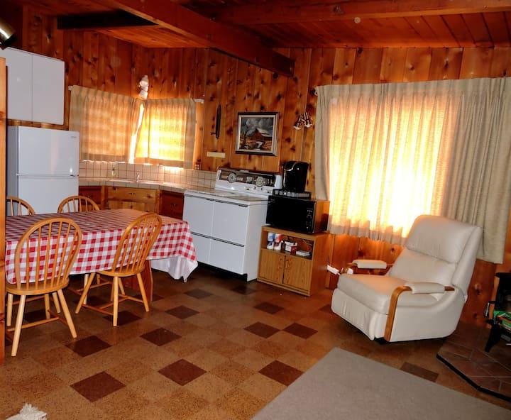 The Lost Pine Cabin