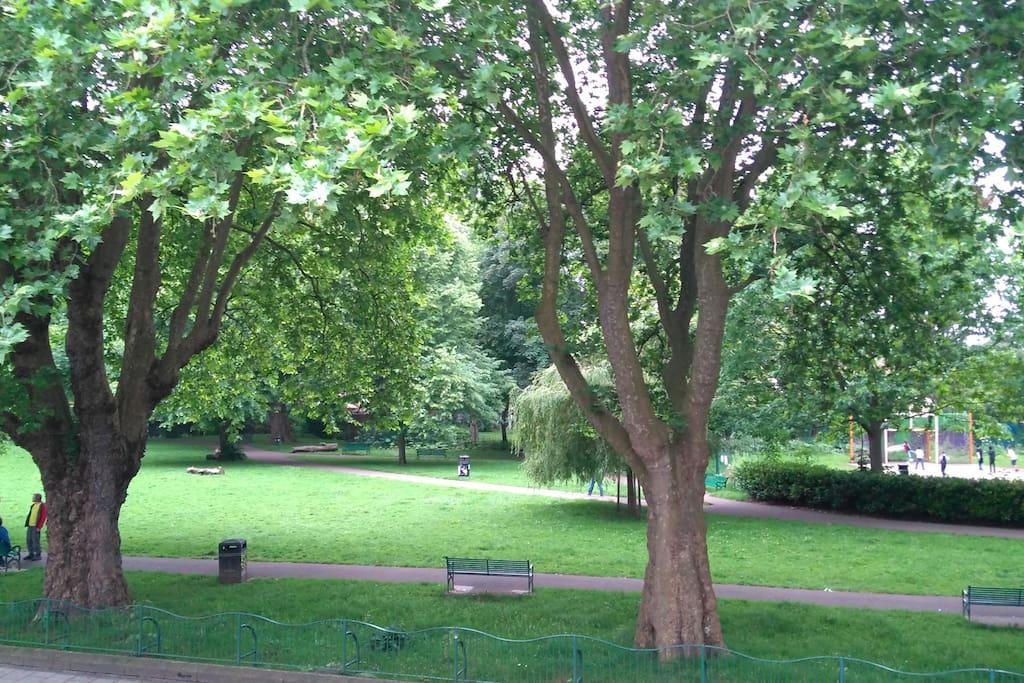 Park opposite the flat