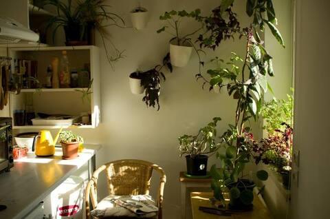 Minimalist 2-room flat with nice view