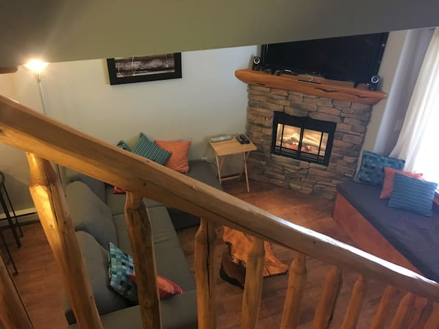 BigWhite Ski In/Ski Out w Private HotTub & Garage - Kelowna - Stadswoning