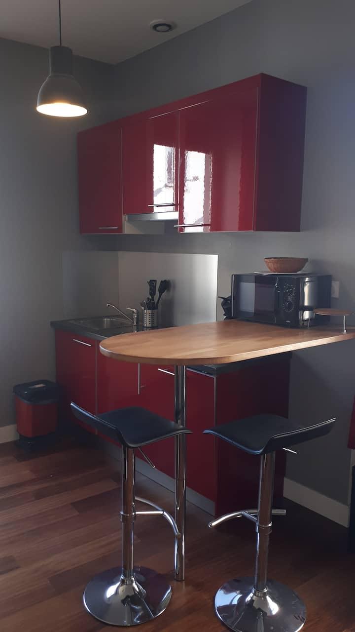 Studio meublé accès aisé faculté Lyon 2 et  Lyon 3