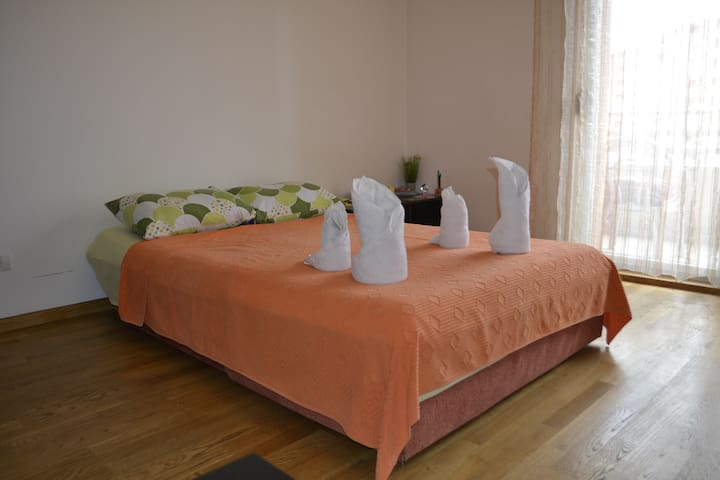 Charming apartment Nina - Podgorica - Pis
