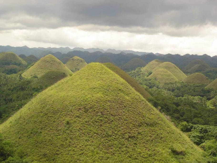 The World Famous Chocolate Hills. Private or Group Tours Available.