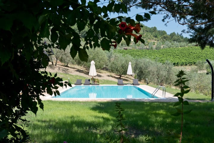 Lovely apartment with pool& garden - Castellina In Chianti - Apartment