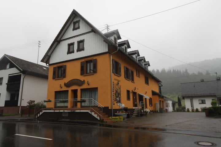 Guesthouse Alexanna in Baden-Baden - Baden-Baden - House