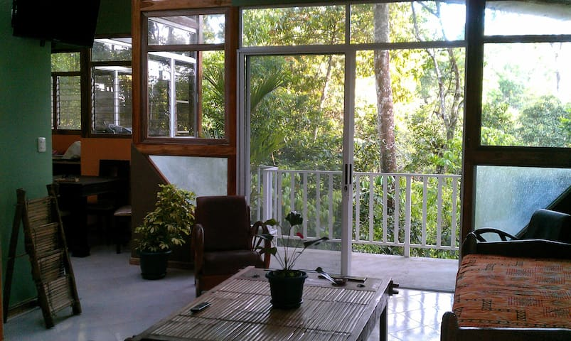Cosy Top Trees  Jungle Apartment - Manuel Antonio - Daire