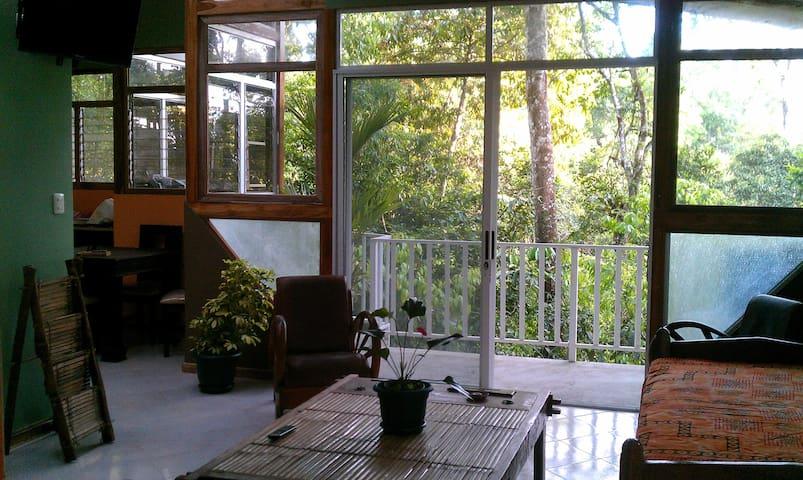 Cosy Top Trees  Jungle Apartment
