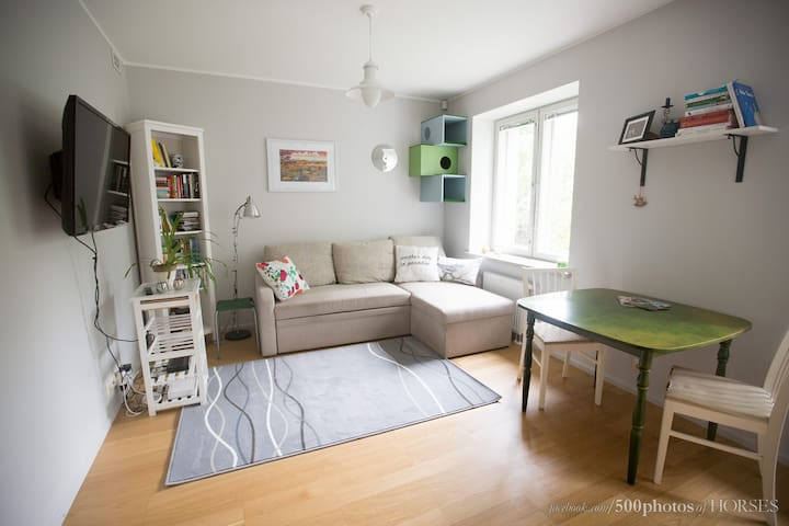 Tallinn´s most friendly apartement welcomes you! - Tallinn - Appartement