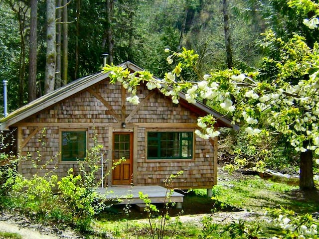 Forest garden cottage by the ocean - Powell River - Kabin
