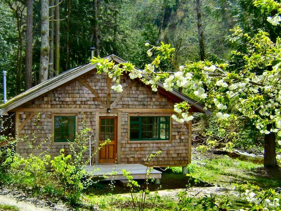 Find homes in Savary Island on Airbnb