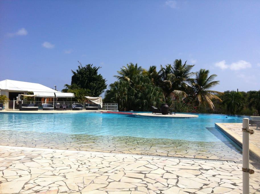La piscine sous le soleil