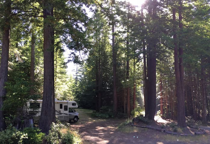 We offer 3 campsites for tent camping (you bring the tent) or campervans and small RVs (your total combined vehicle length - tow vehicle + trailer - must be no more than 24' or you might get stuck getting in here, then you'll be in a fine pickle.)