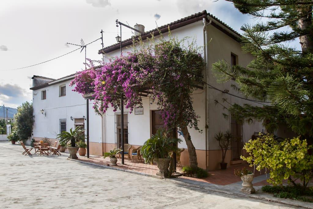 Casa rural en oliva valencia casas en alquiler en oliva - Inmobiliaria oliva valencia ...