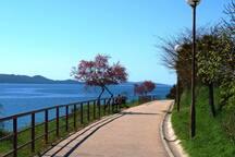 Seaside promenade #2