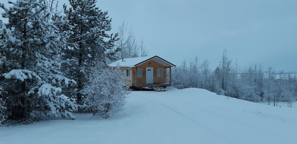 Cute, cozy, comfortable, country cabin