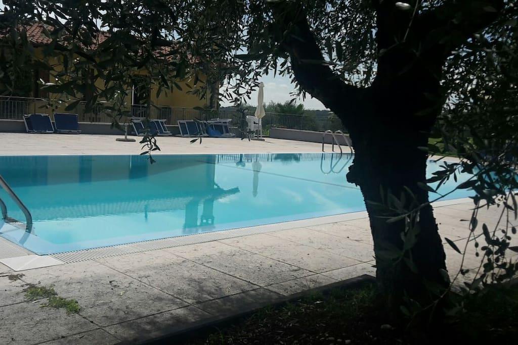 piscina vista appartamento