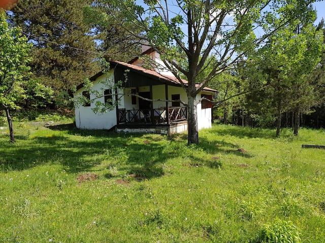 Traditional Turkishvillage wildlife mountain house