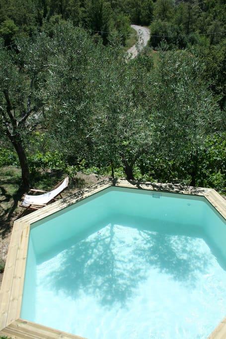 Piscinette neuve avec vue, au milieu des oliviers et des lavandes