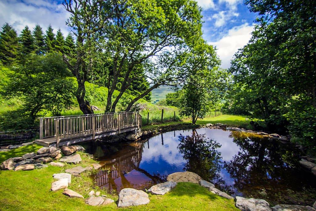 Private pond and bridge