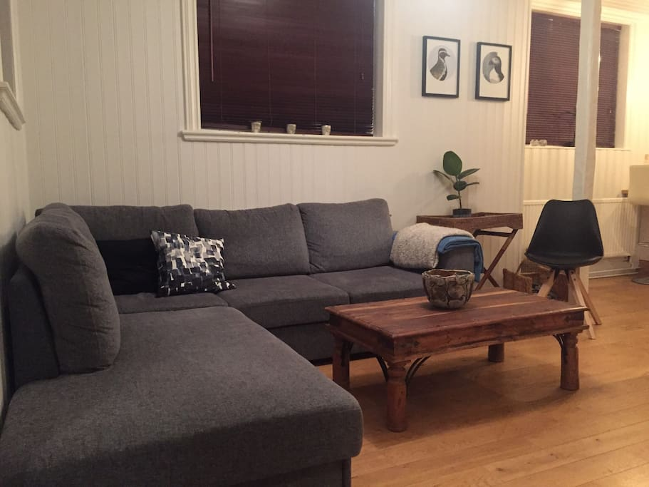 Cosy living room with cable TV and a 160 cm wide sofa-bed.
