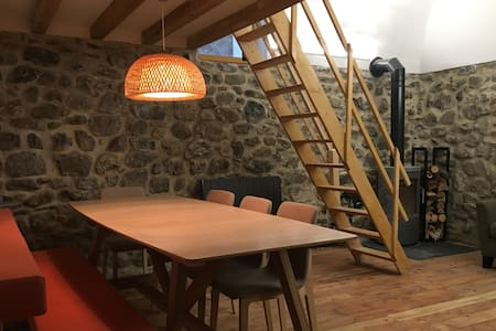 Charming flat. Ski, hiking holidays. 1h from Nice - Saint-Étienne-de-Tinée - Lejlighed