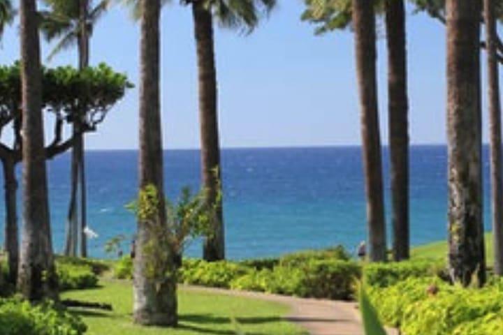 Wailea Elua 1101 - Beachfront Section Ocean View