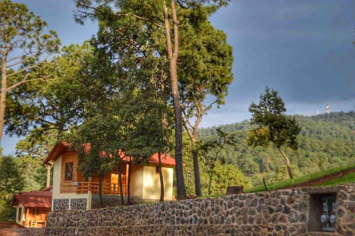 Suite Gardenia para 2 personas en Villas Guízar