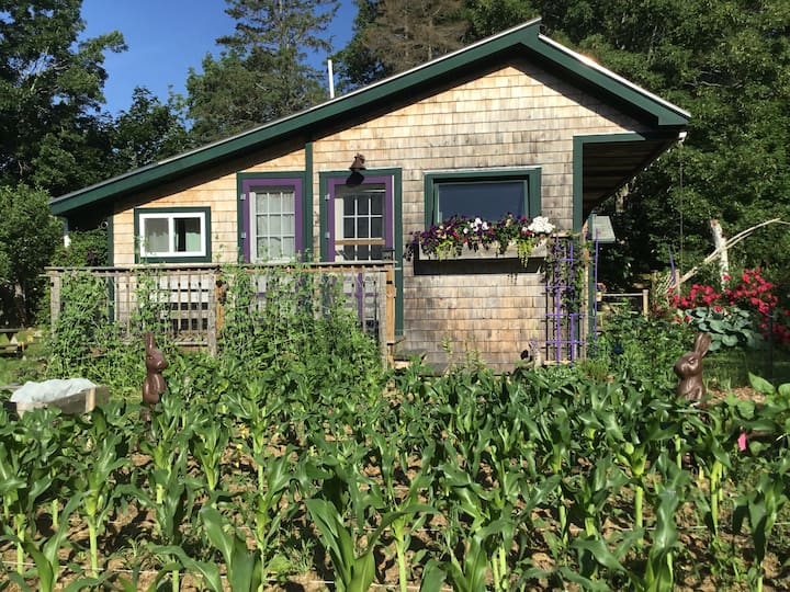 Lovely Two Bedroom Apartment on Vegetable Farm