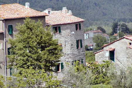 on the tuscan mountains