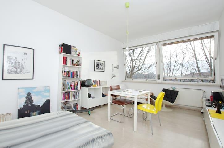 TRASTEVERE huge double room - Roma - Leilighet