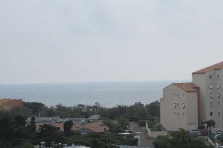 Cap d'Agde, 4 pers., 50 m. de la plage