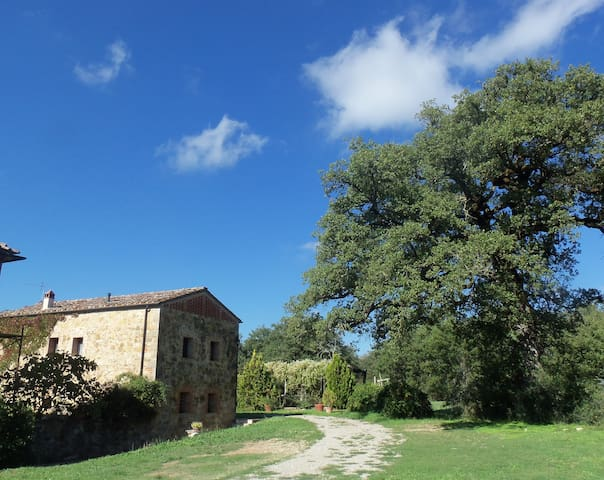 A beautiful old Haybarn near Siena - Montalto, Castelnuovo Berardenga - House