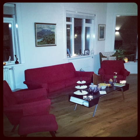Wonderful appartment in centre - Reykjavik - Lägenhet