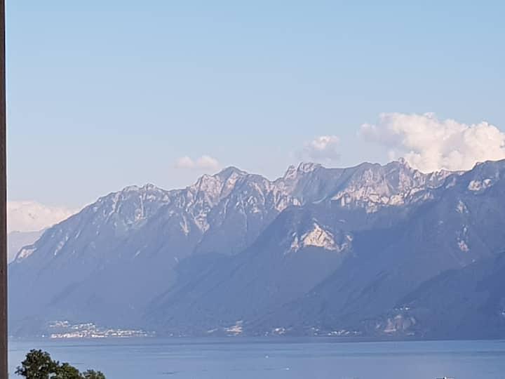 Panorama lac et alpes, quartier gare
