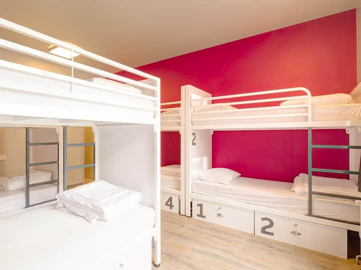 Generator Mitte - Bed in 8 Bed Dorm