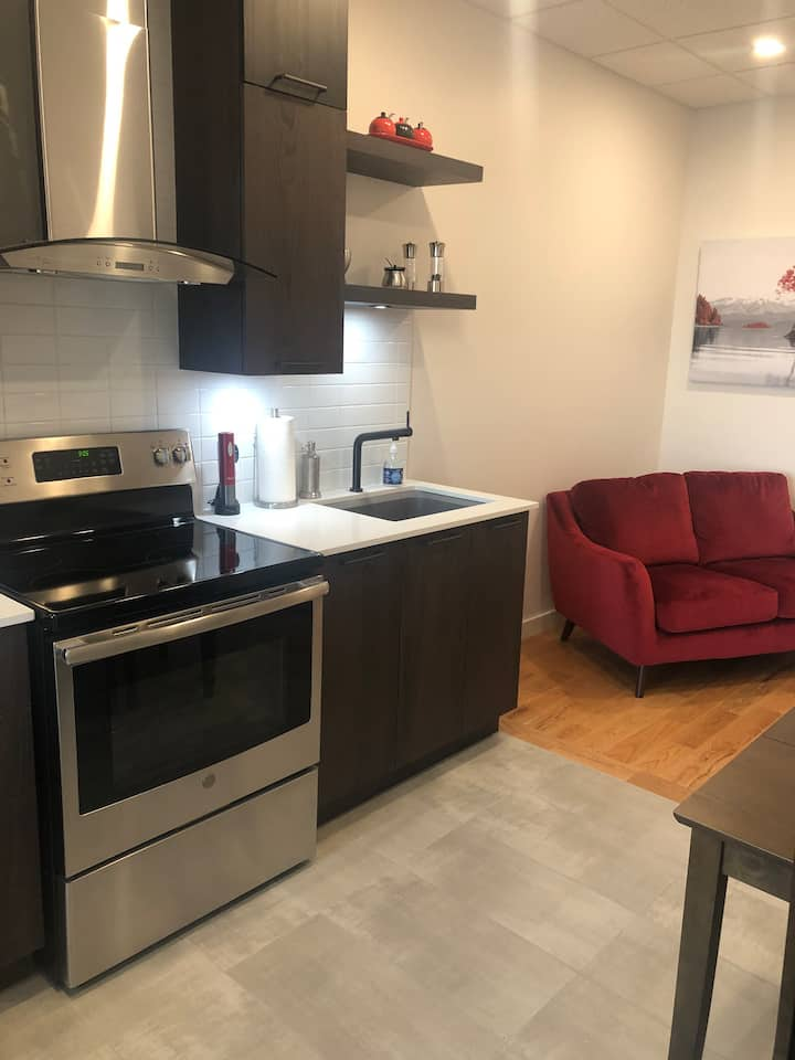 Appartement 3 1/2 au centre-ville de rimouski