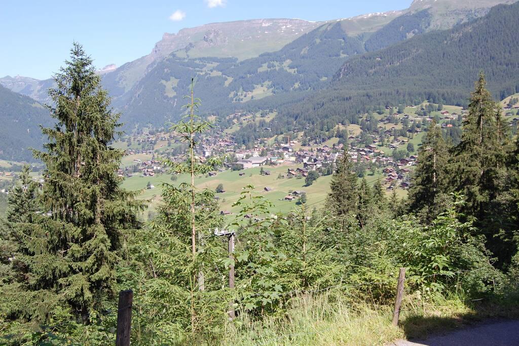 Aussicht auf Grindelwald