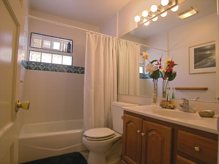 This is the guest bathroom; it is in the hallway located right outside the guest bedroom.
