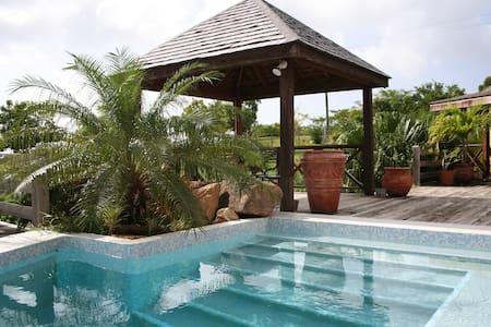 Bacchus Villa in Galley Bay - Antigua