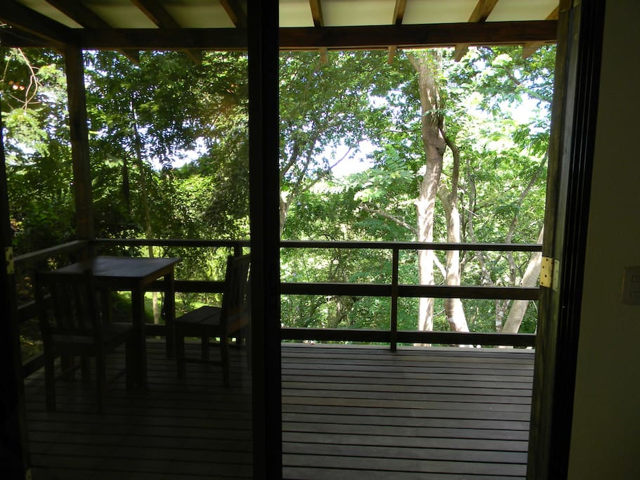 Enjoy the shady deck for monkey viewing and peek and boo ocean views....