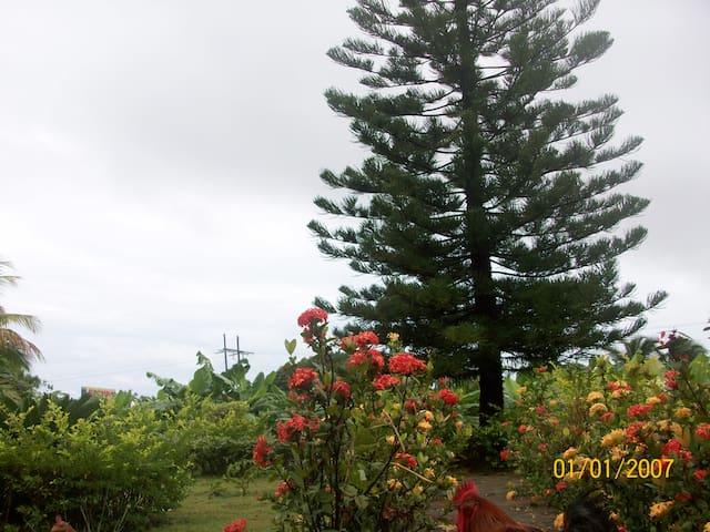Villa para relajarse y descansar - Bani - วิลล่า