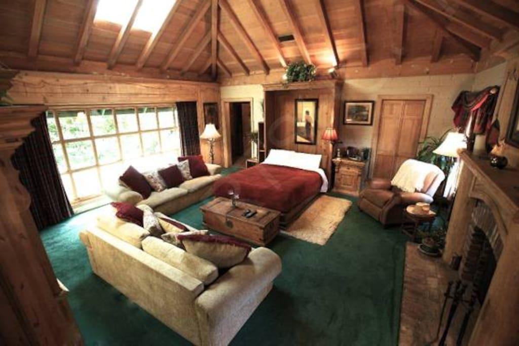 Livingroom/Bedroom with fireplace