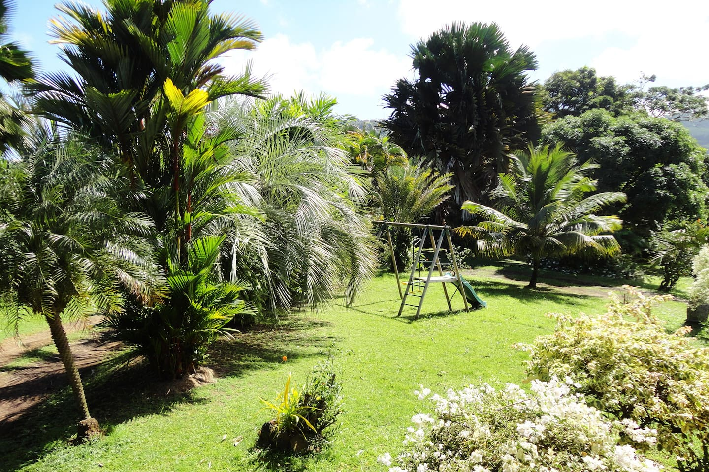 At the heart of a Paradise F1 - Apartments for Rent in Sainte Marie ...