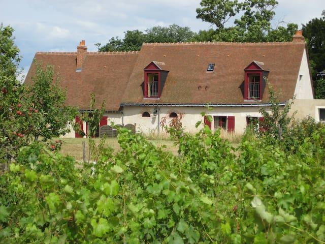 Cottage au coeur d'un vignoble - Vernou-sur-Brenne - Talo