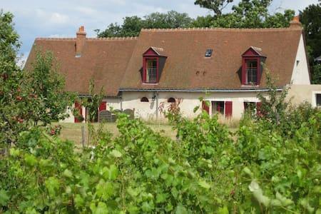 Cottage au coeur d'un vignoble - Vernou-sur-Brenne - Hus