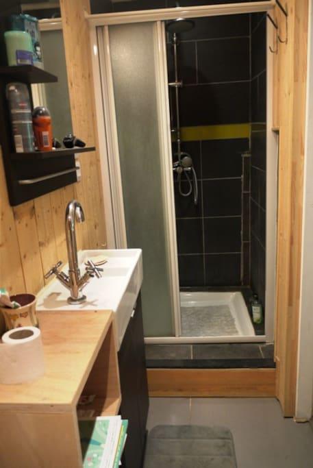 salle de bains avec grande douche confortable